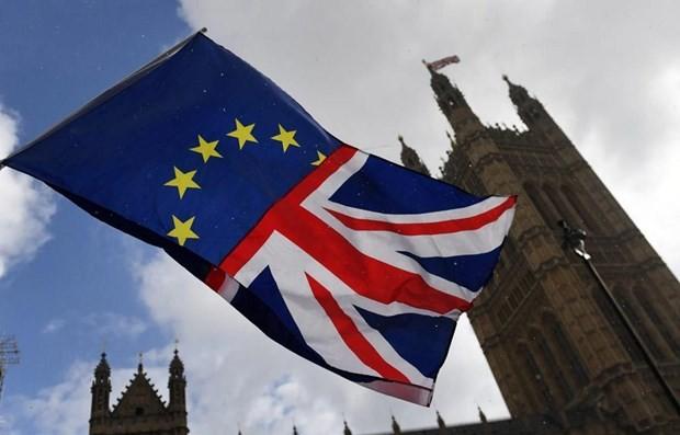 欧盟同意延迟脱欧期限 - ảnh 1