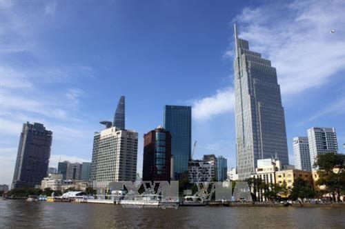 胡志明市要以高度政治决心发展服务设施 - ảnh 1