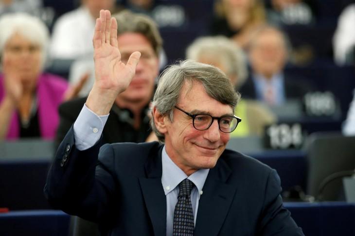 意大利候选人被任命为欧洲议会议长 - ảnh 1