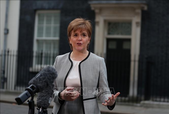 英国脱欧:苏格兰首席部长斯特金称不排除阻止英国脱欧的任何选项 - ảnh 1