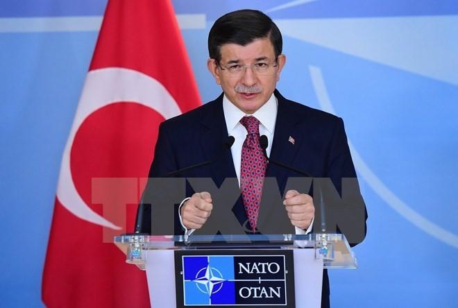 อียูและตุรกีเห็นพ้องเกี่ยวกับแนวทางแก้ไขปัญหาผู้อพยพ  - ảnh 1