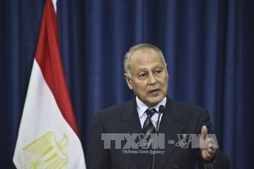 อดีตรัฐมนตรีว่าการกระทรวงการต่างประเทศอียิปต์ดำรงตำแหน่งเลขาธิการสันนิบาตอาหรับ - ảnh 1