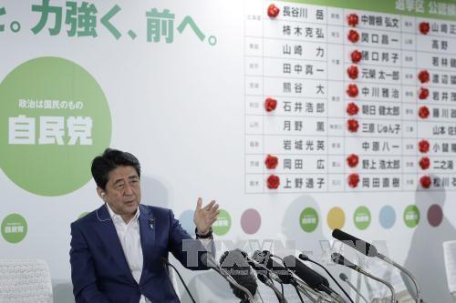 พรรคร่วมรัฐบาลคว้าชัยชนะในการเลือกตั้งวุฒิสภาญี่ปุ่น   - ảnh 1