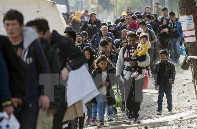Германия заявила о введении пограничного контроля на неопределенный срок - ảnh 1