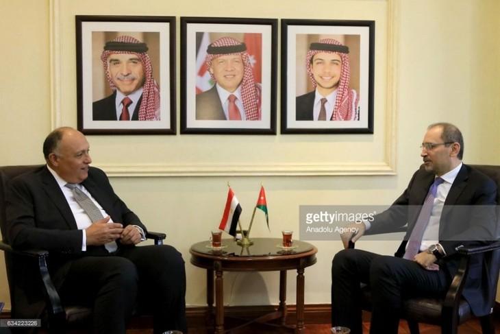 Египет и Иордания сотрудничают для создания Палестинского государства  - ảnh 1