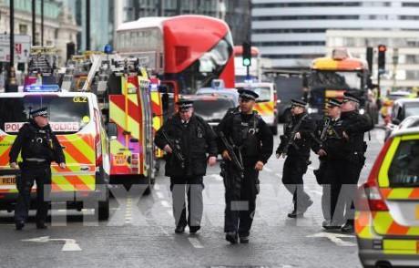 Теракт у здания британского парламента: задержанные в ходе расследования подозреваются в теракте - ảnh 1