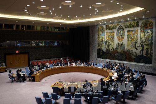 СБ ООН расходится во мнениях по способу разрешения ядерного вопроса КНДР - ảnh 1