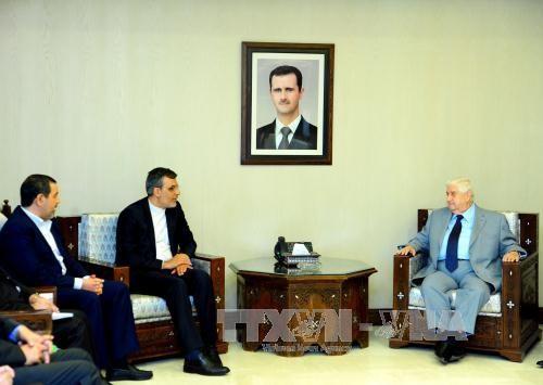 Сирия подтвердила свою решимость бороться с терроризмом - ảnh 1