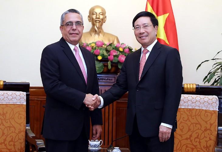Вице-премьер, глава МИД Вьетнама Фам Бинь Минь принял делегации Лаоса и Кубы - ảnh 1