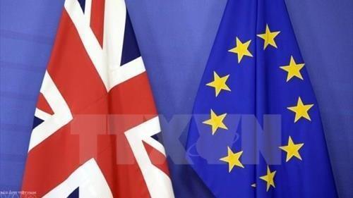 Великобритания желает достичь соглашения с ЕС - ảnh 1