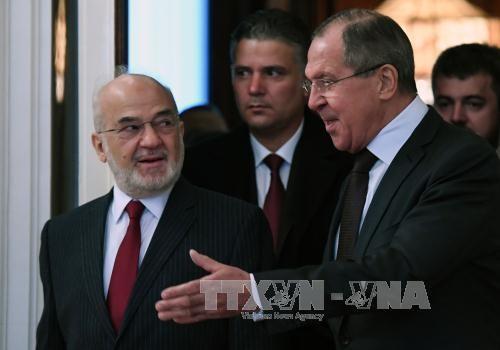 Россия призвала решить политический кризис в Ираке дипломатическим способом - ảnh 1