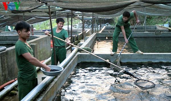 Во Вьетнаме открылась международная выставка аквакультуры - ảnh 1