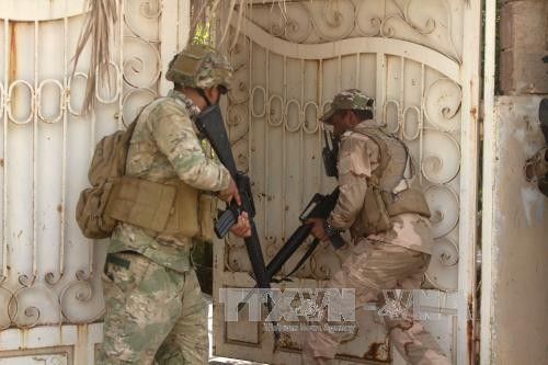 Иракская армия атаковала последний оплот боевиков ИГ - ảnh 1