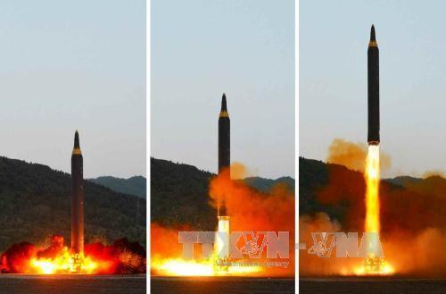 Ракетно-ядерная программа КНДР служит лишь целями самообороны - ảnh 1