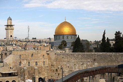 Израиль и Палестина прокомментировали решение Гватемалы - ảnh 1