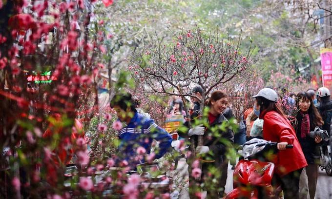 Оживленная предновогодняя атмосфера в Ханое - ảnh 2