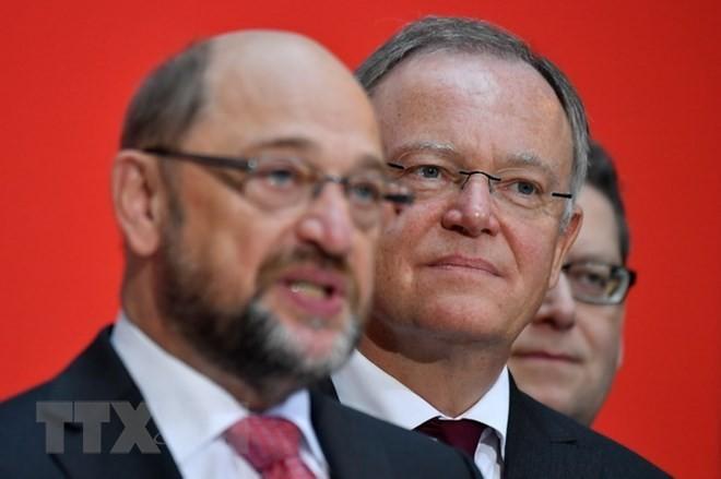 «Альтернатива для Германии» стала второй по популярности партией Германии, опередив СДПГ - ảnh 1