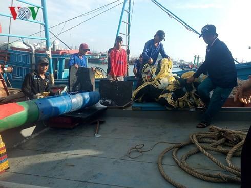 Кханьхоа: Рыбаки выходят в район архипелага Чыонгша для промысловой деятельности после Тэта - ảnh 1