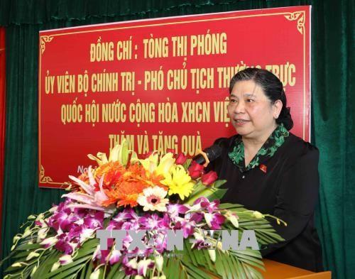 Тонг Тхи Фонг вручила подарки лицам, имеющим заслуги перед Революцией в провинции Нгеан  - ảnh 1