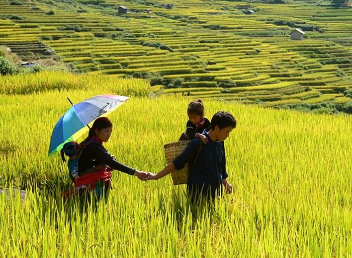 Ради устойчивого развития вьетнамской семьи в эпоху  модернизации и индустриализации - ảnh 1