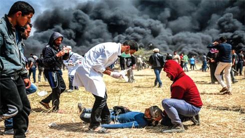 ООН предупредила о гуманитарном кризисе в секторе Газа из-за бюджетного дефицита - ảnh 1