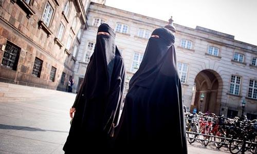 В Дании официально запретили закрывать лицо в общественных местах  - ảnh 1