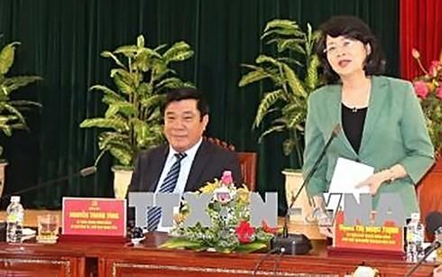 Вице-президент Данг Тхи Нгок Тхинь совершает рабочую поездку в Биньдинь - ảnh 1