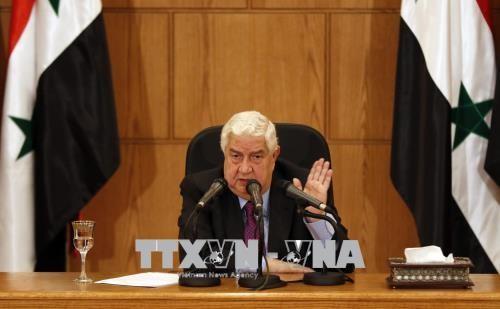 Министр иностранных дел Сирии посетит Россию до конца августа - ảnh 1