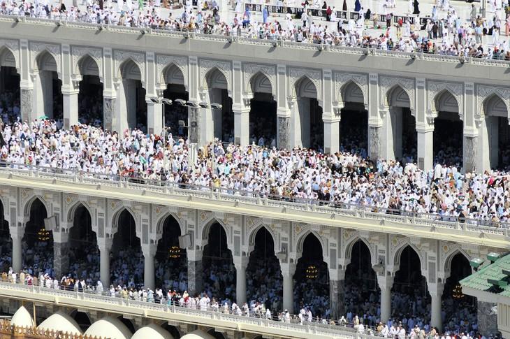 Десятки египетских паломников погибли, совершая хадж в Мекку - ảnh 1