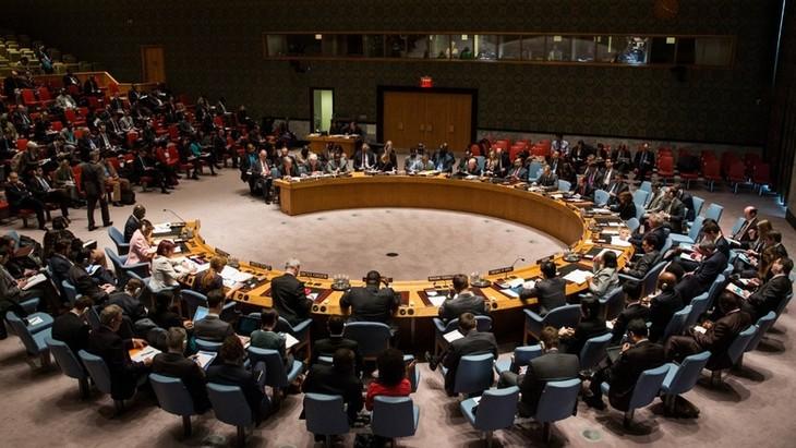 Великобритания сообщила Совбезу ООН новую информацию по делу Скрипалей - ảnh 1