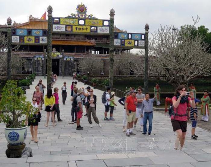 Туристическая отрасль совершенствуется для привлечения большего числа VIP-туристов - ảnh 1