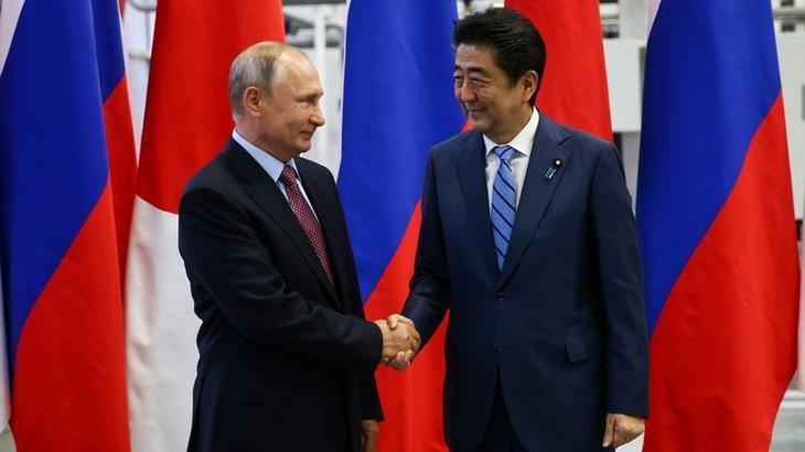Лидеры России и Японии обсудили экономическое сотрудничество на спорных островах - ảnh 1