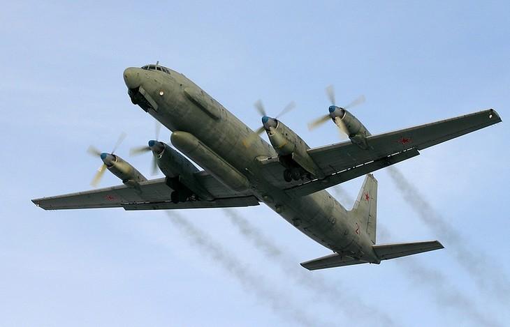 В России завели уголовное дело в связи с сбитым в Сирии  самолетом Ил-20 - ảnh 1