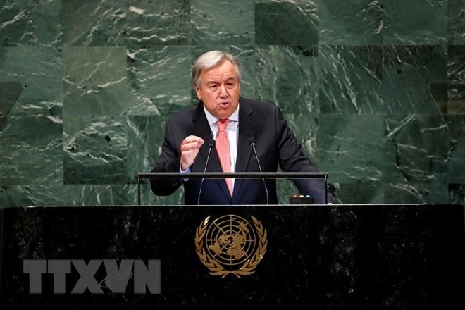 ООН и Франция призвали мир немедленно реагировать на изменение климата - ảnh 1