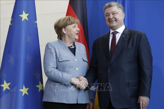 Германия, Франция и Украина приветствовали участие России в урегулировании конфликта в Донбассе - ảnh 1