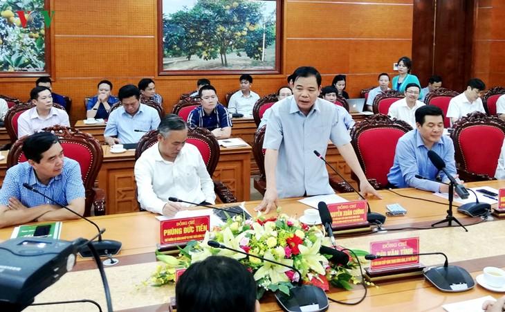 Разведение крупного рогатого скота – одно из приоритетных направлений животноводства Вьетнама на ближайшие 10 лет - ảnh 1