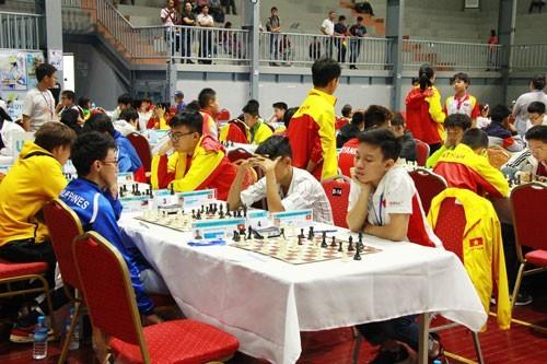 Вьетнамская команда завоевала 12 золотых медалей на Чемпионате ЮВА по шахматам - ảnh 1