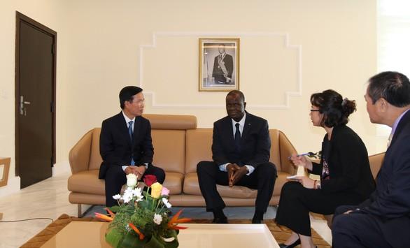 Вьетнам и Кот-д'Ивуар наращивают многостороннее сотрудничество - ảnh 2