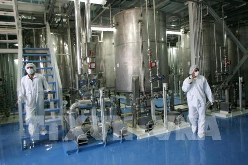Иран обогатил уран до уровня 4,5% - ảnh 1