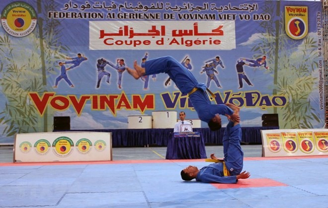 First Vietnamese martial art Grand Prix held in Algeria - ảnh 1