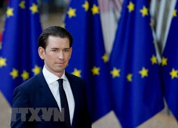 Austria plans migrant reception centers outside EU - ảnh 1