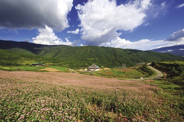 The beauty of Bhutan in the eyes of a Vietnamese photographer - ảnh 1