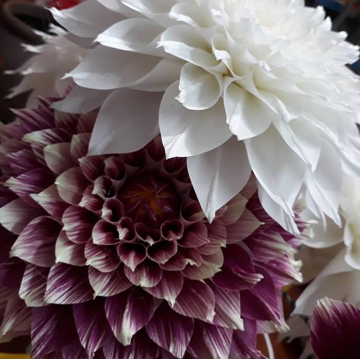 Artisan Mai Hanh – Hanoi's Queen of silk flowers  - ảnh 4