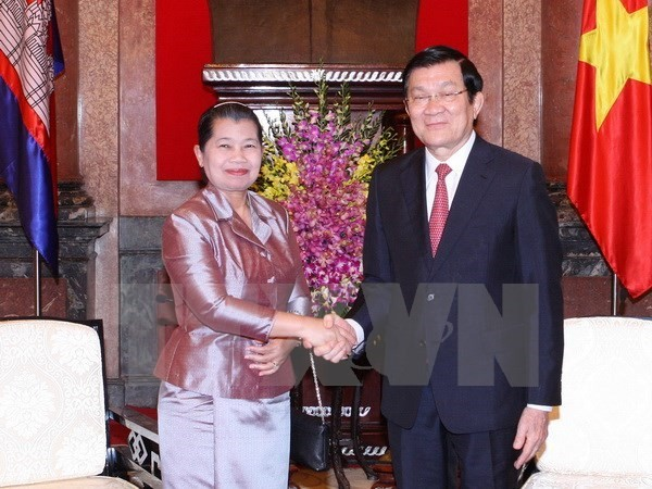 Vietnam values ties with neighboring countries - ảnh 1
