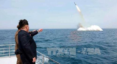 North Korea launches ballistic missile from submarine - ảnh 1