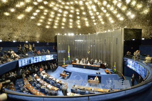 Brazilian Senate begins Dilma Rousseff impeachment trial - ảnh 1
