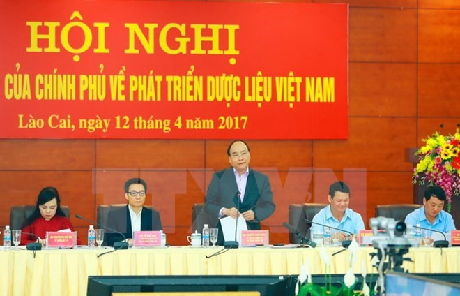 Solutions sought to develop herbal medicinal materials - ảnh 1