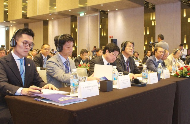South central region's potential introduced to Japanese investors  - ảnh 1