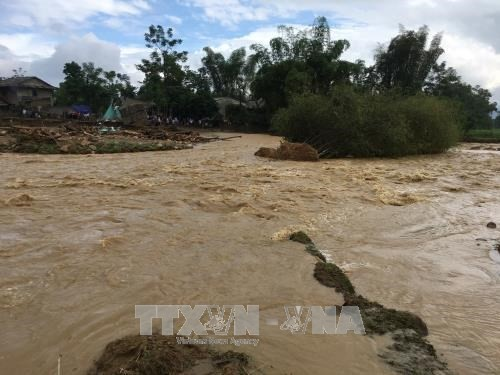 PM urges flood recovery measures  - ảnh 1