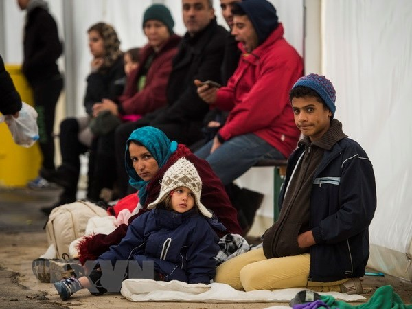 Germany pushes for solution to refugee crisis - ảnh 1